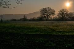 Sonnenaufgang am Ettiker Hof bei Tiengen