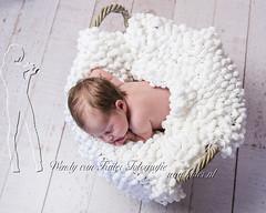 newborn-fotografie-baby-wendy-van-kuler-hilversum-20151202-8134 (Wendy van Kuler) Tags: baby babys meisje ecru babyfotografie newbornfotografie newbornfotografiewendyvankuler 2015120424