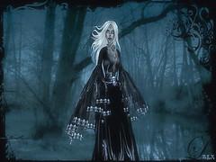 Dead Gardens (alexandra wardark) Tags: mist forest gothic sl secondlife subtlefogvoguecolordefaultcolorsortondenoise