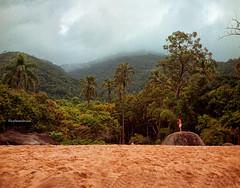 Beach and wood (CarlosMF) Tags: brazil sp ilhabela rolleiflex28f jabaquara zeissplanar2880 kodakportra400colornegativefilm120