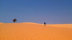 Seek shade (V L Thun Anh) Tags: blue people sun color tree sand hill minimal