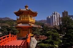 Nouveaux territoires - jardin Nan Lian 6 (luco*) Tags: china new bridge garden pagoda chinese jardin hong kong pont chinois nan territories chine lian pagode nouveaux territoires flickraward flickraward5