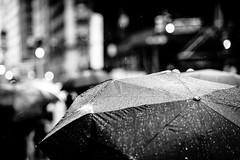 umbrellas NYC (petespande) Tags: street nyc newyorkcity blackandwhite bw monochrome rain umbrella nikon bokeh 85mm d750