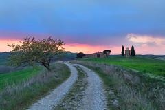 Il sentiero (marypink) Tags: trees sunset sky landscape tramonto pov path perspective cielo tuscany toscana valdorcia sentiero paesaggio sanquiricodorcia 2470mmf28 cappelladivitaleta nikond5200
