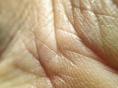 FullSizeRender (38) (sswartz) Tags: abstract macro closeup flesh skin wrinkles
