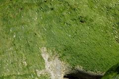 Rocks, Rottingdean (Brighthelmstone10) Tags: sussex brighton eastsussex rottingdean smcpda1650mmf28edalifsdm pentaxk30