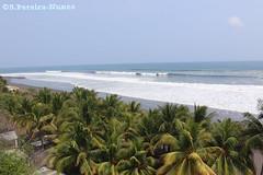 El Salvador's Coastline Beaches (ssspnnn) Tags: praia beach mar agua playa paisagem palmeiras palmtrees elsalvador ola ondas nunes coqueiros litoranea cocoteros canoneos70d spereiranunes snunes spnunes