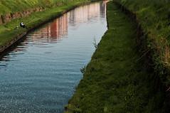 Pavia 2016 (Jean Banja) Tags: fishing foam pavia polluted