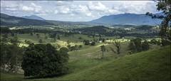 Overlooking Tyalgum NSW-1= (Sheba_Also) Tags: nsw overlooking tyalgum