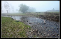 IMG_1360 (c0466art) Tags: light beautiful grass fog creek canon landscape scenery atmosphere mysterious land 1dx c0466art