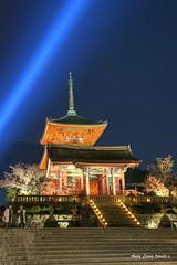 Kiyomizu light-up - it's Hanami season (Pic_Joy) Tags: world building heritage japan architecture pagoda spring kyoto shrine asia blossoms illumination   sakura cherryblossoms lightup    kiyomizudera hanami  higashiyama       unesco   threetierpagoda