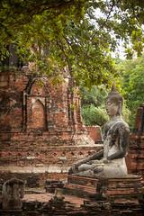 Thailand - Ayutthaya ruins (Cyrielle Beaubois) Tags: thailand temple ancient ruins novembre buddha buddhism thalande ayutthaya bouddhisme 2015 canoneos5dmarkii cyriellebeaubois