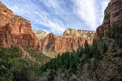 From Further Back (brev99) Tags: park trees outdoors utah zionnationalpark canyons colorefex atx124afprodx d7100 nikviveza topazdenoise tokina1224dxii cacorrection dxooptics8