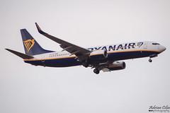 Ryanair --- Boeing 737-800 --- EI-FIV (Drinu C) Tags: plane aircraft aviation sony boeing ryanair dsc 737 mla 737800 lmml hx100v adrianciliaphotography eifiv