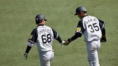 000010 (strh333888) Tags: baseball tigers hanshin buffaloes orix npb
