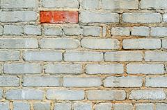 Different (Doug NC) Tags: color brick texture different bricks pinkfloyd odd oddball anotherbrickinthewall whitebricks 1redbrick