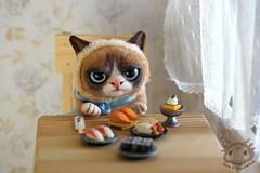 06 (rioky_angel) Tags: cute monster cat creativity toys furry handmade ooak fluffy fantasy clay octopus artdoll creature grumpy arttoy grumpycat toymaker polimerclay riokycreatures