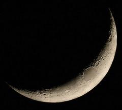 Premier croissant de Lune du 10 avril 2016 - 21h16 (Didier Auberget) Tags: moon lune telescope astrophotography astronomy astronomie astrophotographie tlescope canoneos500d firstcrescentmoon premiercroissantdelune