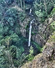 Daggs Falls near Killarney, Qld (Aussie~mobs) Tags: waterfall australia killarney queensland volcanic plub daggsfalls