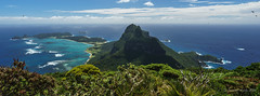 Panorama from Mt Gower summit (NettyA) Tags: panorama plants landscape flora view pano australia hike nsw summit day6 bushwalk unescoworldheritage lordhoweisland 2016 lhi mtgower janetteasche lordhoweforclimate mtgowerclimb