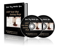Your Dog e-Book (hijibijitech) Tags: book bookcover cdcover ebook dvdcover ebookcover kindlebookcover amazonbookcover bookcoverpresentation