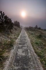 Vlieland, the Netherlands (Lex Vermeend Photo's) Tags: sunset nature netherlands fog waddenzee sunrise vlieland wadden waddeneiland nederland wad nederlands vuurtoren waddensea nederlandnetherlands