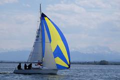 _DSF3845 (Frank Reger) Tags: regatta u20 dsc segeln segelboot diessen