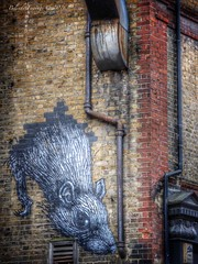 Smell a rat (Belinda Fewings (2.5 million views. Thank You)) Tags: winter brown streetart building london art tourism architecture outside rat december grafitti artistic outdoor bricks pipe creative panasonic drainpipe whitechapel e1 spitalfields vermin jacktheripper eastend capitalcity bricked blackrat internationalcity eastendoflondon buildingandarchitecture largerat panasoniclumixdmc pbwa creativeartphotograhy belindafewings