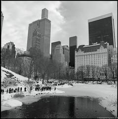 Central Park, NYC. (setpower1) Tags: nyc newyorkcity bw snow centralpark 120film kodaktrix gapstowbridge hasselblad500cm vintagefilmcamera kodakxtol hasselblad50mmf4distagon blizzard2016