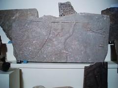 Relief Fragments from Nimrud (Aidan McRae Thomson) Tags: museum birmingham ancient artgallery relief westmidlands assyrian bmag nimrud