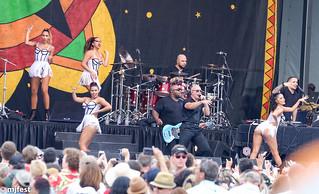 Jazzfest - Pitbull musician