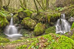 En algn lugar... (SAMU CS) Tags: wood winter verde green water agua falls galicia bosque invierno fraga cascadas