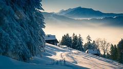 A perfect winter day (helena678) Tags: trees winter light mist snow mountains alps beautiful misty fog schweiz switzerland tracks huts snowcovered eveninglight schwyz cabins rigi