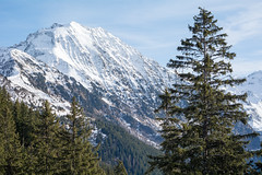 A snowy Mountain in the Rhne-Alps in France (thatfinalcut) Tags: schnee winter snow france alps tree nature berg landscape frankreich berge alpen landschaft baum rhnealps rhnealpen