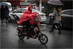 Poncho (Chris Lue Shing) Tags: china street city travel red rain bike kid shanghai candid scooter riding pan moped raincoat panning oldtown poncho oldcity shanghaishi fujixa1 chrislueshing fujifilmxc1650mmf3556ois