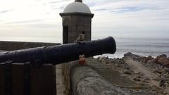 We took over the Fort !!! (rocknrolltheke) Tags: ocean portugal fort outdoor atlantic porto smokey atlanticocean oporto forte atlantik wicket ozean 31365 atlantischerozean smokeystravelcorner