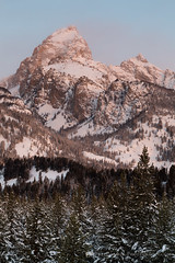 Ambient Sunrise Light on Tetons (Free Roaming Photography) Tags: morning winter usa snow sunrise dawn ambientlight moose northamerica wyoming tetons grandteton wintersunrise jacksonhole grandtetonnationalpark evergreentrees tetonmountains mountowen northwesternwyoming taggartlaketrail westernwyoming disappointmentpeak lodgepolepinetrees tetonpeaks sunriseonthetetons