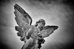 Not every Angel is 'armless.. (Andy J Newman) Tags: england cemetery grave graveyard statue angel bristol nikon arm unitedkingdom headstone vale gb armless arnos arnosvale d7100 silverefex