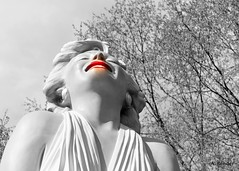 Happy Valentines Day Mr. President (vickersund) Tags: sculpture macro marilynmonroe valentine groundsforsculpture selectivecoloring