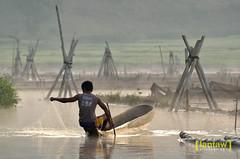 Lake Seloton: Checking the nets (lantaw.com) Tags: lake dailylife lakesebu dugoutcanoe tboli southcotabato lakeseloton