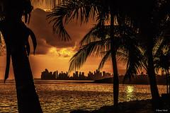 Junto al Mar (Bernai Velarde-Light Seeker) Tags: ocean sunset sea america palms atardecer mar pacific centro central tropics pacifico oceano palmas velarde bernai veredatropical bernaivelarde