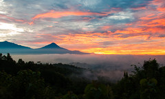 Atmospheric (Oliver J Davis Photography (ollygringo)) Tags: morning travel light red sky orange plants cloud mist mountain nature weather misty clouds forest sunrise indonesia landscape dawn volcano java southeastasia cloudy hill atmosphere ridge mount exotic valley tropical range tropics atmospheric enchanted merapi active stratovolcano enchanting centraljava