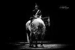 (artsuephotographie) Tags: horse cheval cavalier avignon gala spectacle garderpublicaine chevalpassion artsue criniredor
