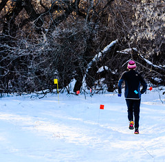Wintershines Blizzard Triathlon 2016-0048 (Kneale Quayle) Tags: winter canada sports competition running saskatoon snowshoeing familyfun prairie saskatchewan holidaypark crosscountryskiing speedskating snowsports healthylifestyle wintershines skiinthecity blizzardtriathlon clarencedowney