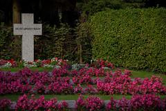 Hamburg - Stellingen Cemetery (Skyart82) Tags: friedhof grab stellingen grabmal gräber