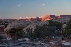 A Time for Deepening (courtney_meier) Tags: winter sunset sunlight evening utah nationalpark sandstone wintersunset dusk canyonlandsnationalpark canyonlands redrock nationalparks theneedles usnationalparks themaze redrockcountry utahjuniper