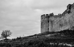 Solemnity (khandozhkoa) Tags: bw france castle architecture landscape nikon europe amateurs officialnikkor landscapesdreams nikonfx 24120f4g