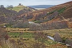 Auchindoun Castle. (artanglerPD) Tags: castle silver river sheep heather birch thecabrach auchindoun