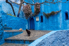 Chaouen, die blaue Perle im Norden Marokkos (Juergen Heitmann) Tags: chaouen blau chefchaouen marokko fotowalk xauen fotoreise juhe59foto