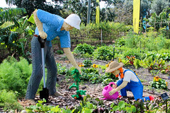 Gardening Grandpa  & Granddaughter (Phil Goldman) Tags: lego florida gardening westpalmbeach 11 february 2016 mountsbotanicalgardens pgoldman